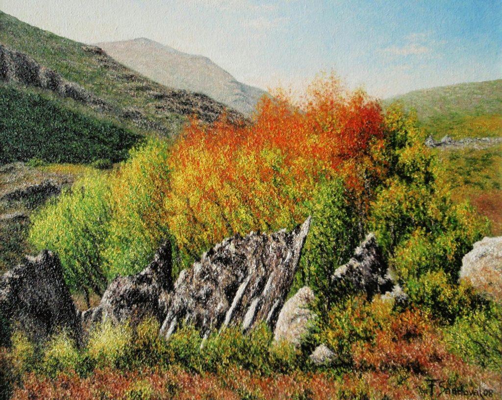 Otoño en su máximo esplendor en el Parque Natural del Hayedo de Tejera Negra en la provincia de Guadalajara,con esa mezcla de tonos amarillos y rojizos.
