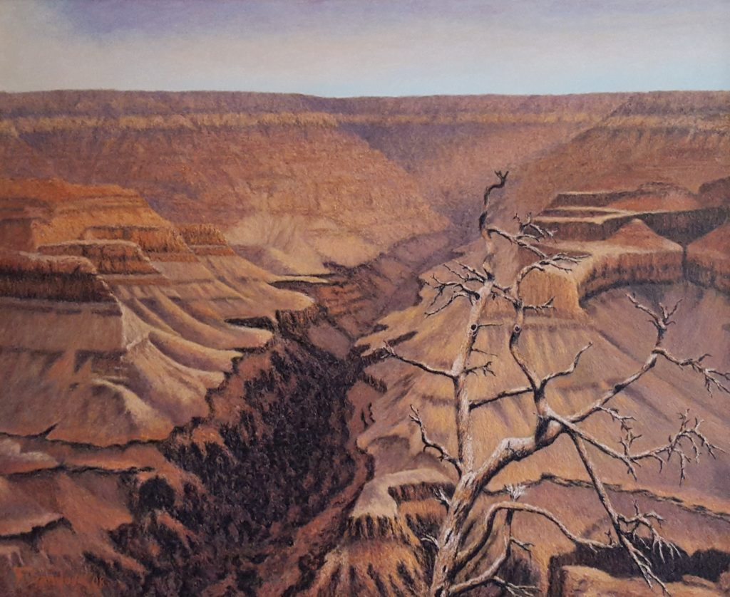 El cañón del Colorado, al norte de Arizona, EEUU, conocido mundialmente por sus cañones de desnivel y sus característicos colores rojizos de la tierra.