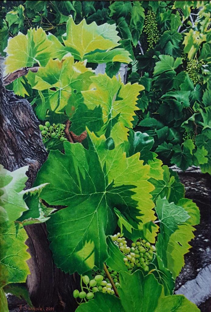 """La Parra de San Illán, en el municipio Toledano de Cebolla, se plasma la luz que intenta penetrar entre las hojas, """"verde que te quiero verde""""."""
