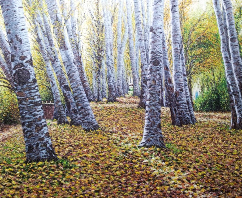 Álamos blancos en las cercanías del Parque Natural de las Lagunas de Ruidera, con un suelo de hojas ocres típico del otoño a la caída de las hojas.