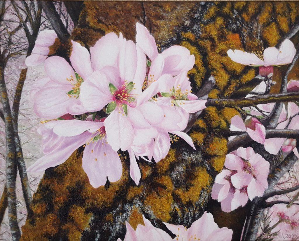 Almendro en flor II, observando la hoja en su máximo esplendor, con la diversidad de tonalidades del tronco del almendro en la época de la primavera.